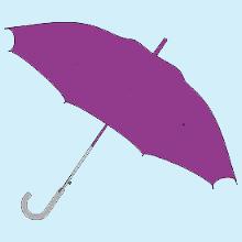 Purple Umbrella