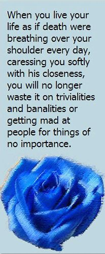 Trivialities and Banalities